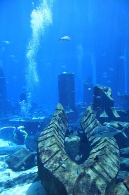 Unterwasserwelt von Atlantis