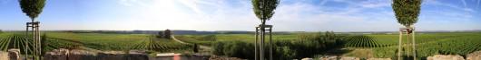 Rundumblick auf der Weininsel im Landkreis Kitzingen.
