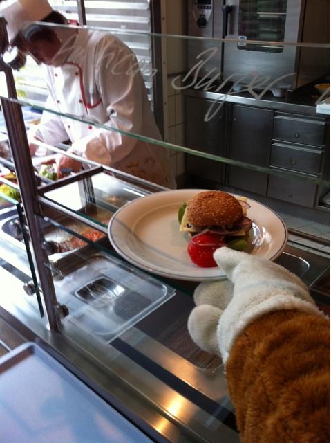 Wie beim Fuchs gabs bei mir gestern auch Burger und Pommes ;-) © by Bausparfuchs