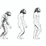 Vom Affen zum Onliner!