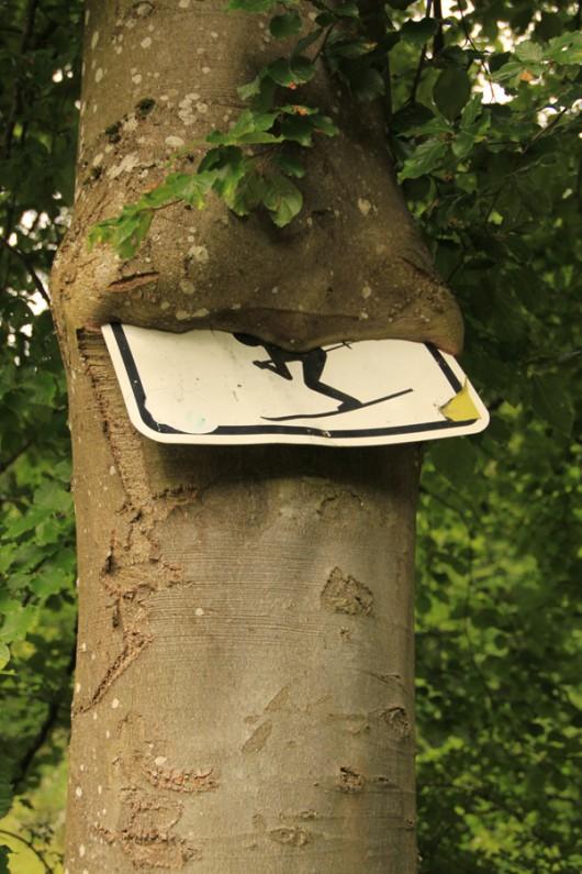 In 5 Jahren wird das Schild komplett verschwunden sein!