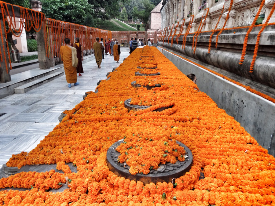 Blumenteppich in Bodhgaya - dem Ort der Erleuchtung (© all-about-schmitz.de)