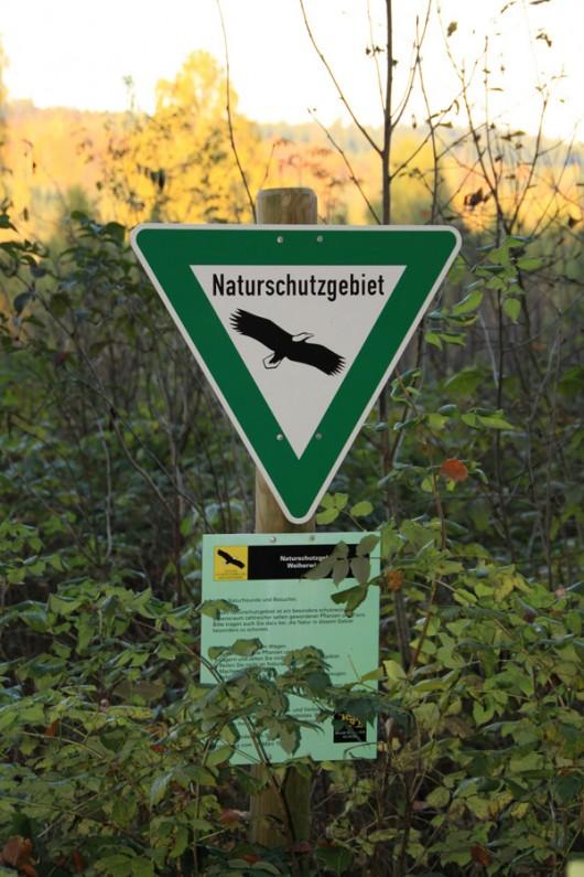 Selbst das Naturschutz-Schild hat sich die Natur zurück erobert.