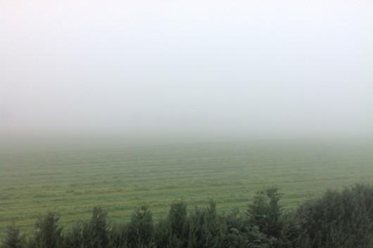 Die Sichtweiter heute Morgen betrug wohl unter 100 Meter.