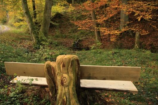 Ein zur Waldbank umfunktionierter Baumstumpf.