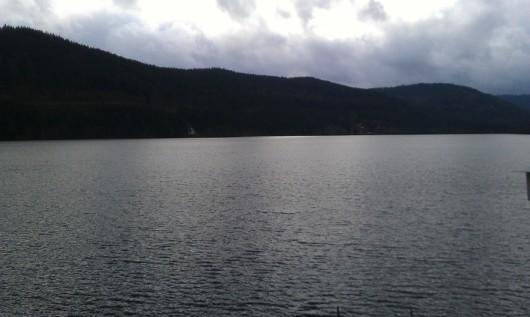 Am Ufer des Titisee.