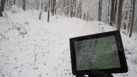 Das obligatorische iPad-im-Wald-Foto ;-)