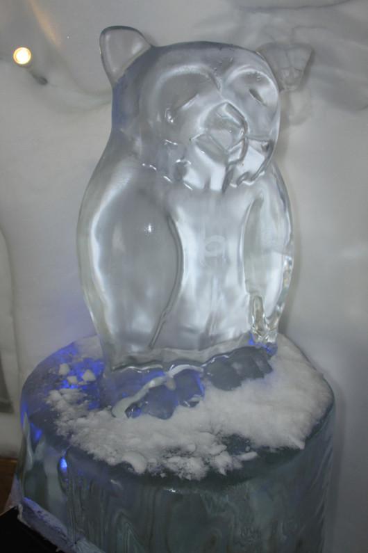 Ein weiteres Kunstwerk aus Eis. Die Eule, die die Schneebar überwacht.