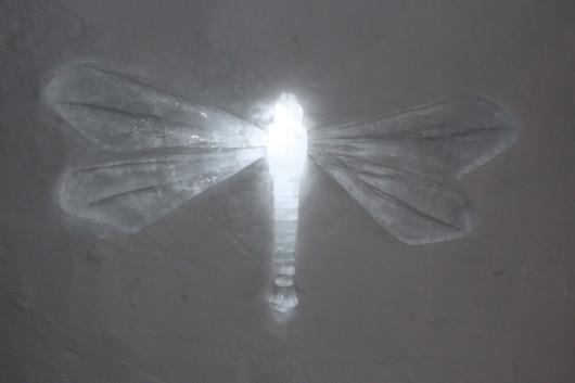 Eine Libelle aus Eis.