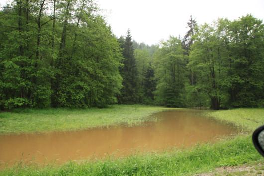 Das eigentliche Flussbett der Rot befindet sich hinter den Bäumen.