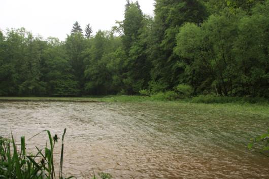 Das 2-Meter-Flussbett hatte sich ausgedehnt auf stolze 50 Meter.