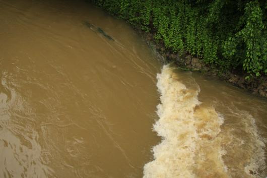 Doch dann überquert die Jagst eine momentan überflutete Staumauer...