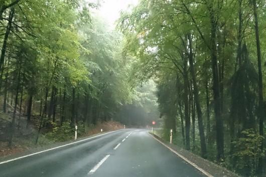 Im Odenwald hat sogar ganz kurz hat sogar die Sonne rausgeschaut.