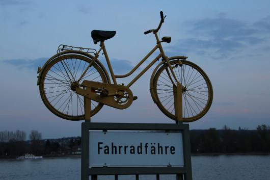 Abends an der Fahrradfähre in Walluf.