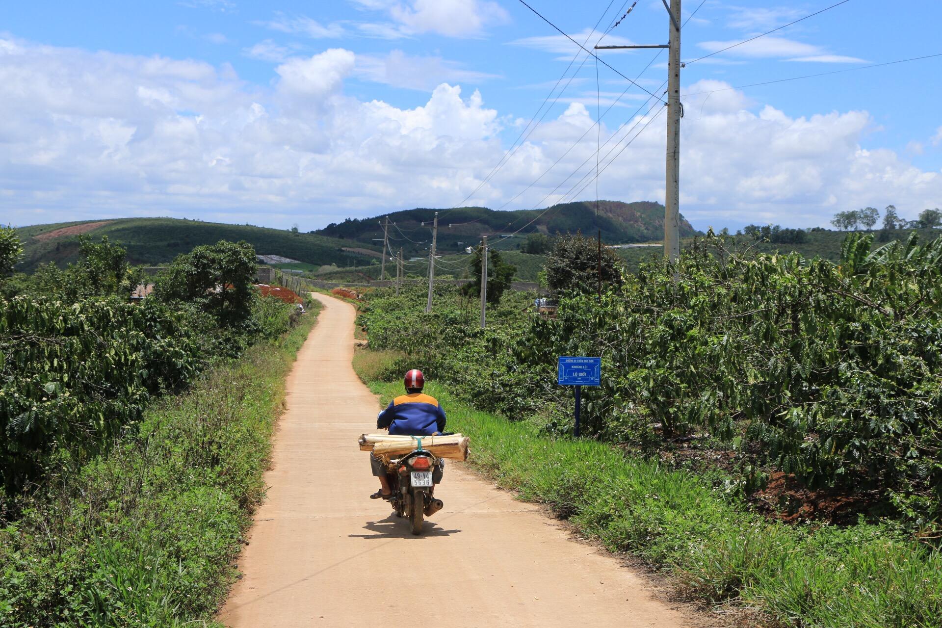 Die Weiten der Kaffeeplantagen. Irgendwo hier liegt das Dorf.