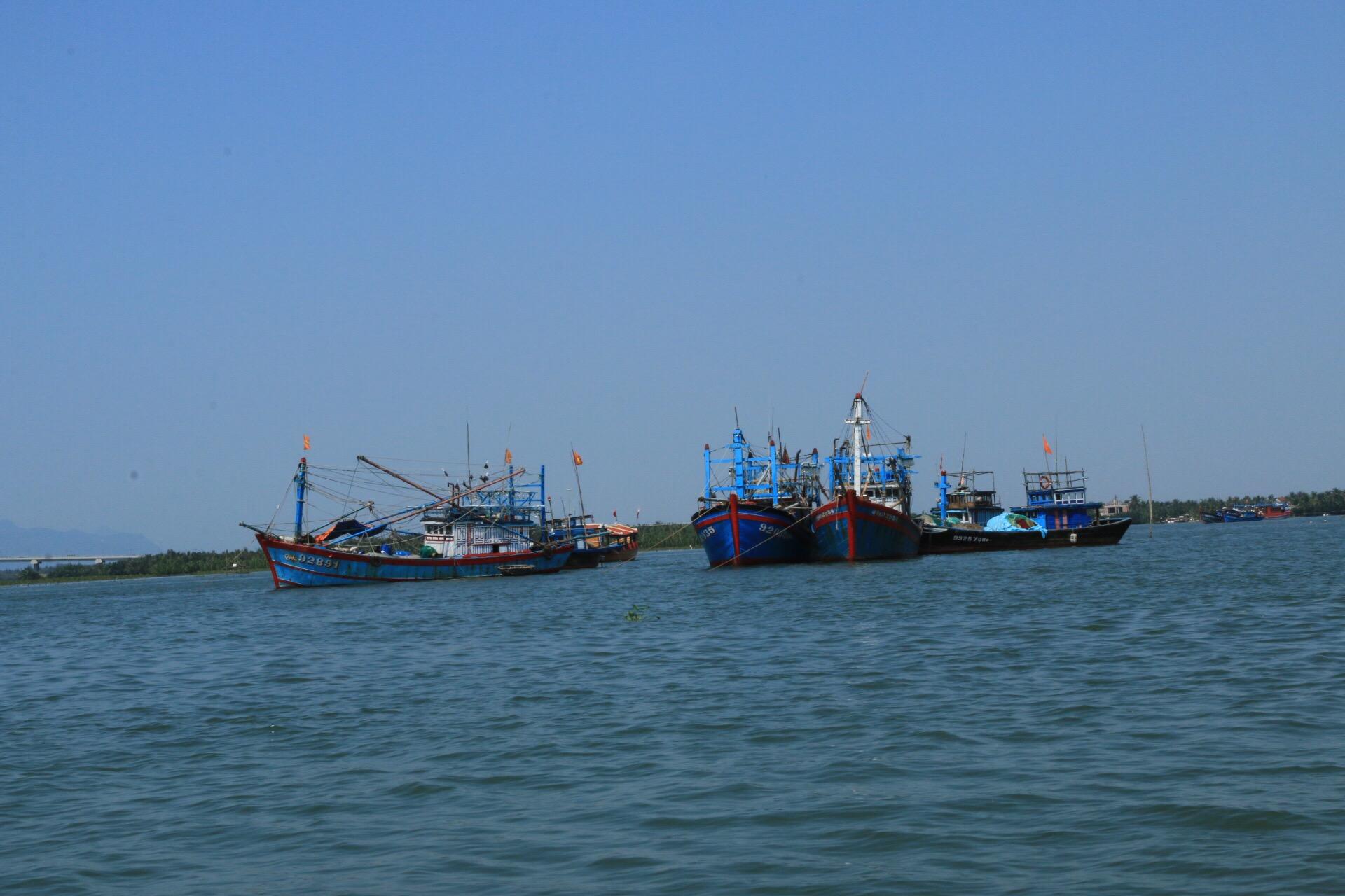 Fischerboote noch im Hafen von Hoi An.