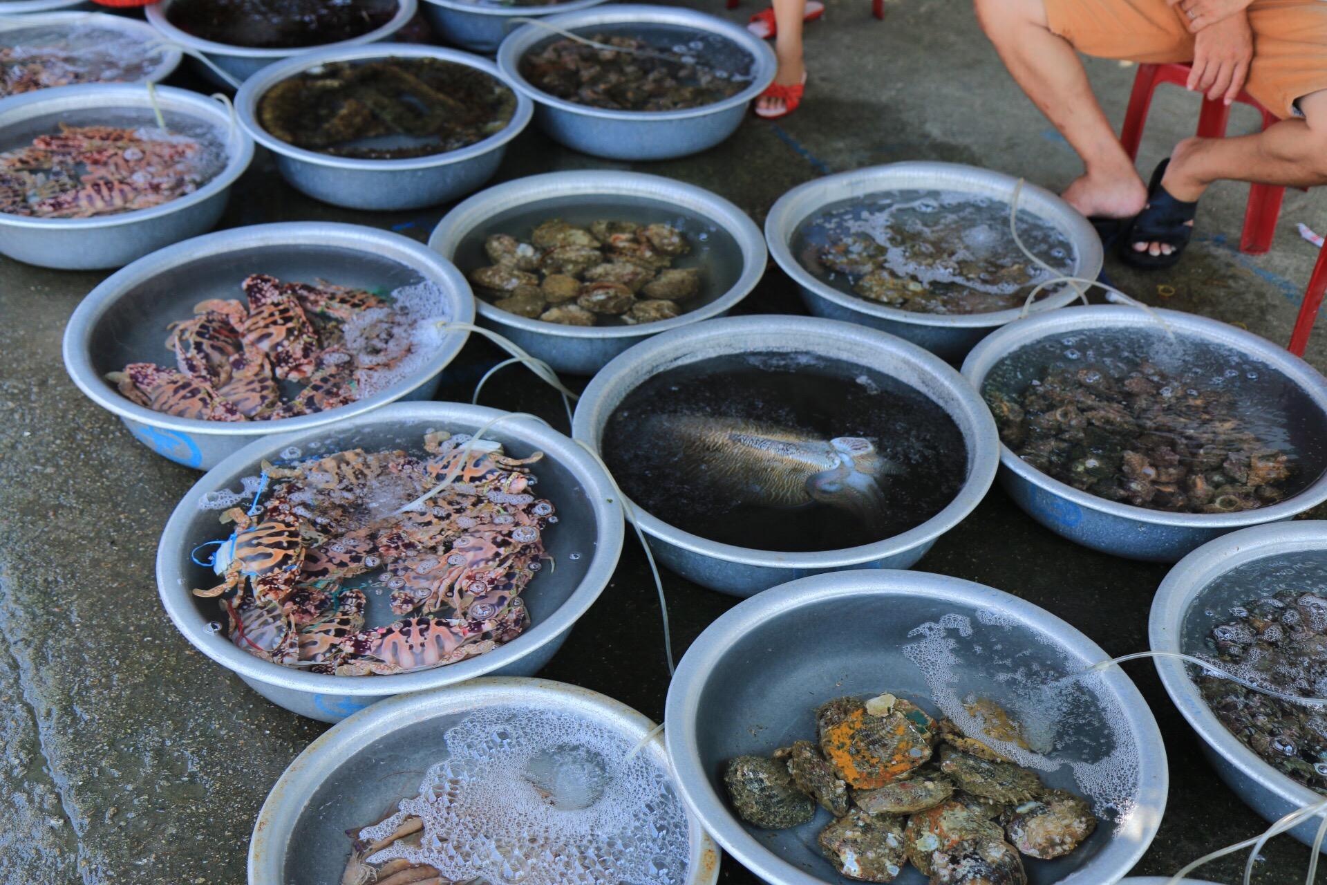 Auf dem Markt - frische noch lebende Fische und anderes Getier aus dem Wasser.