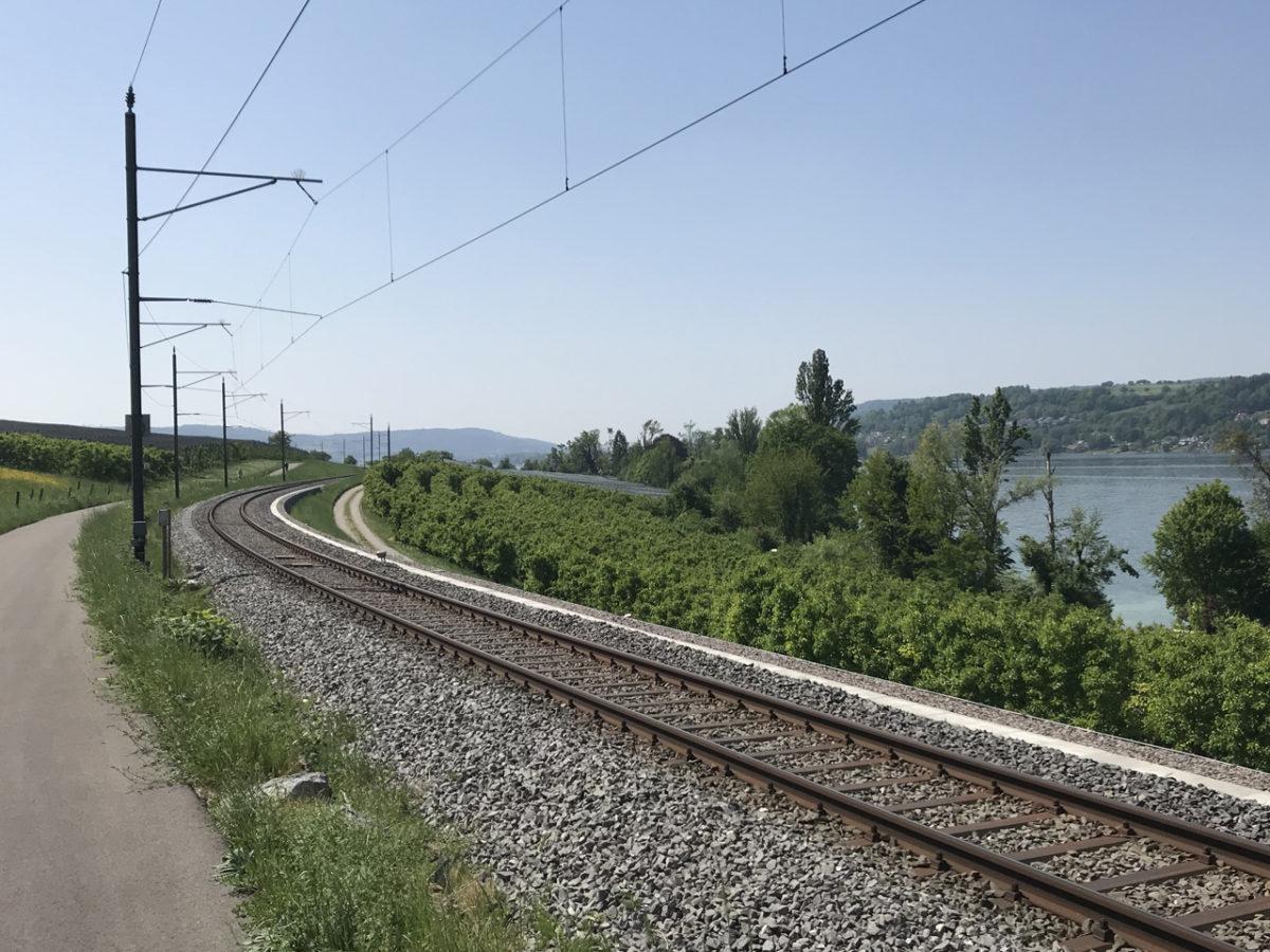 Der Radweg am Untersee - bestens ausgebaut und ausgeschildert.