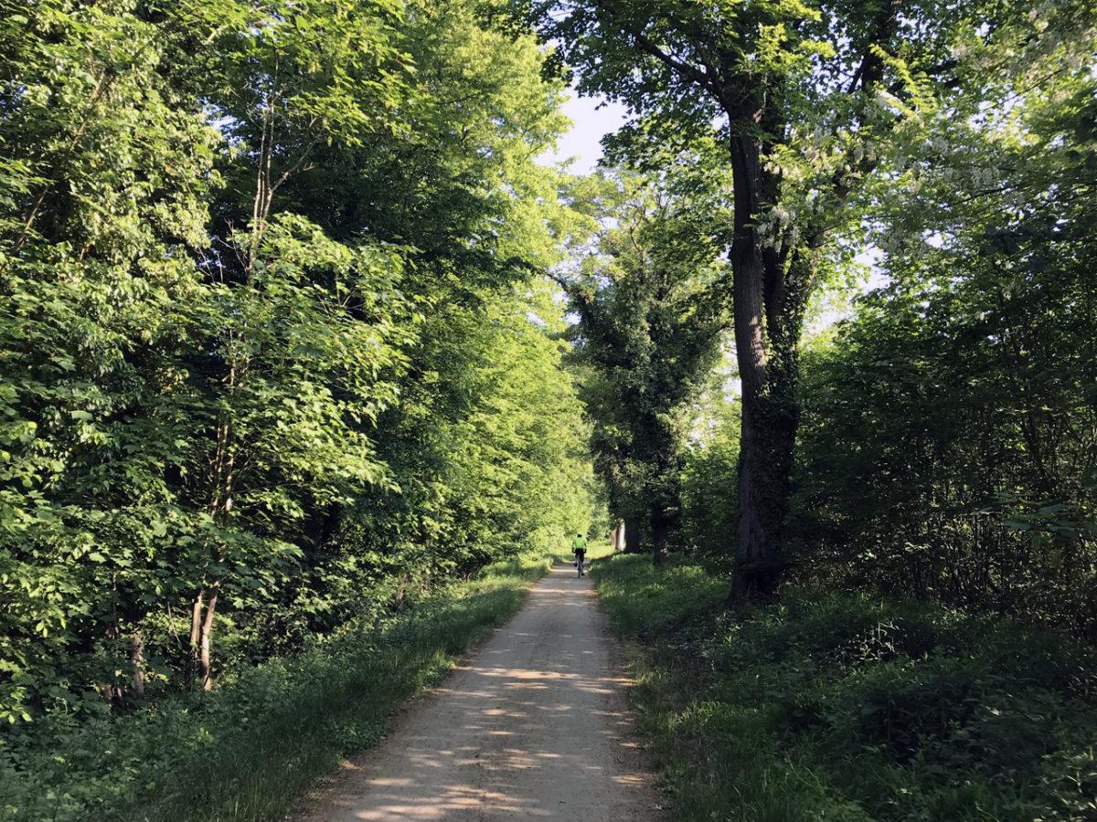 Die Route verlief meist direkt am Kanal entlang oder wie hier mit ein paar Metern Abstand.