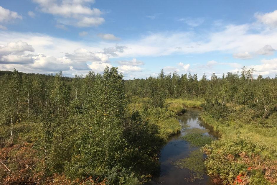 Ab und zu überquerten wir auch mal kleinere Flüsse, aber deutlich weniger Gewässer als noch in Finnland.