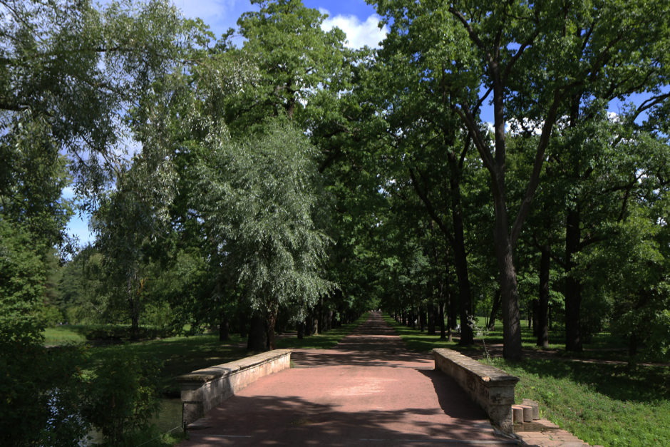 Zum Abschluss nochmal ein versöhnliches Park-Foto ohne Menschen!