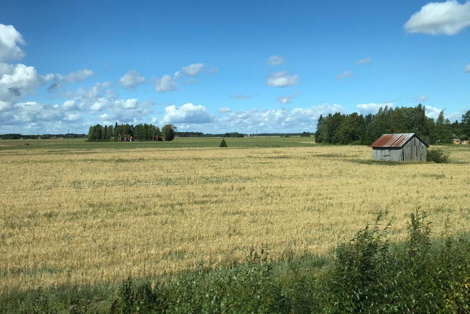 Die südschwedische Landschaft in Finnland... ;-)