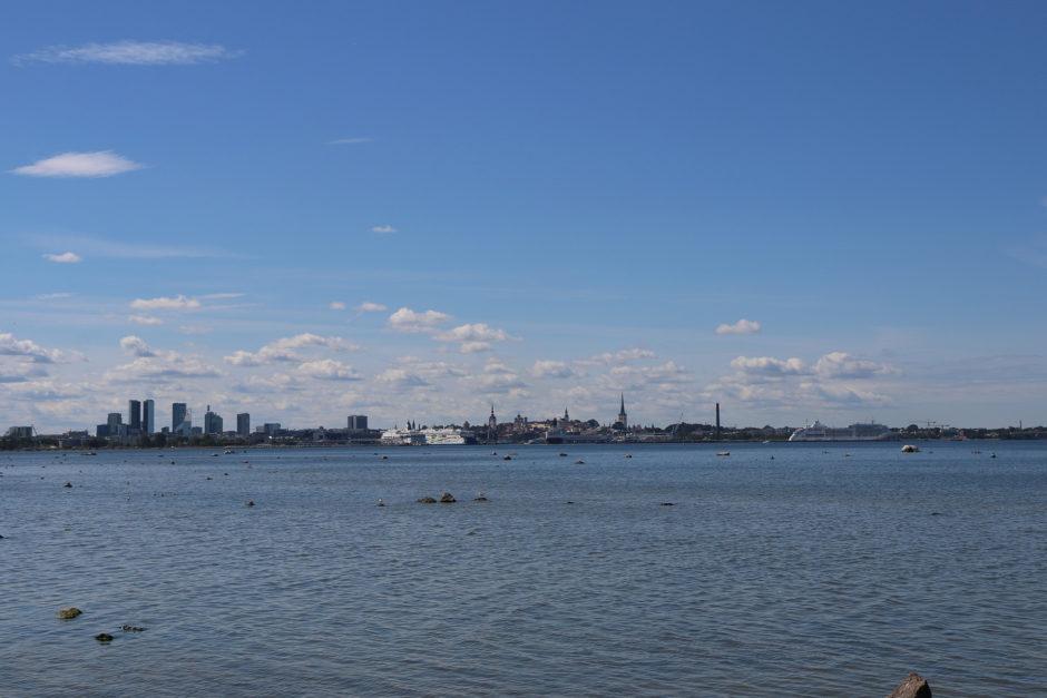 Die Skyline von Tallinn: links der neuere Teil, in der Mitte die Altstadt.
