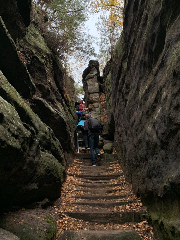 Nicht immer ganz einfach. Der Aufstieg auf den Gohrisch im Elbsandsteingebirge.