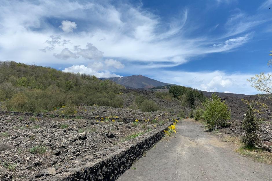 Auf der Fahrt nach oben immer im Blick - der Gipfel des Ätna.