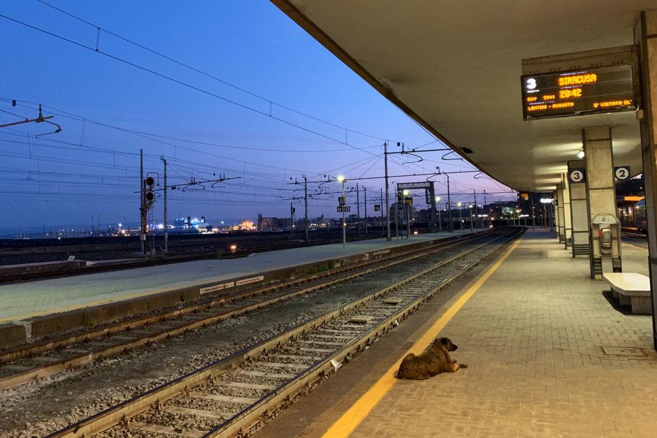 Nur ich und ein Bahnhofshund warteten am Bahnhof von Catania auf den Zug.
