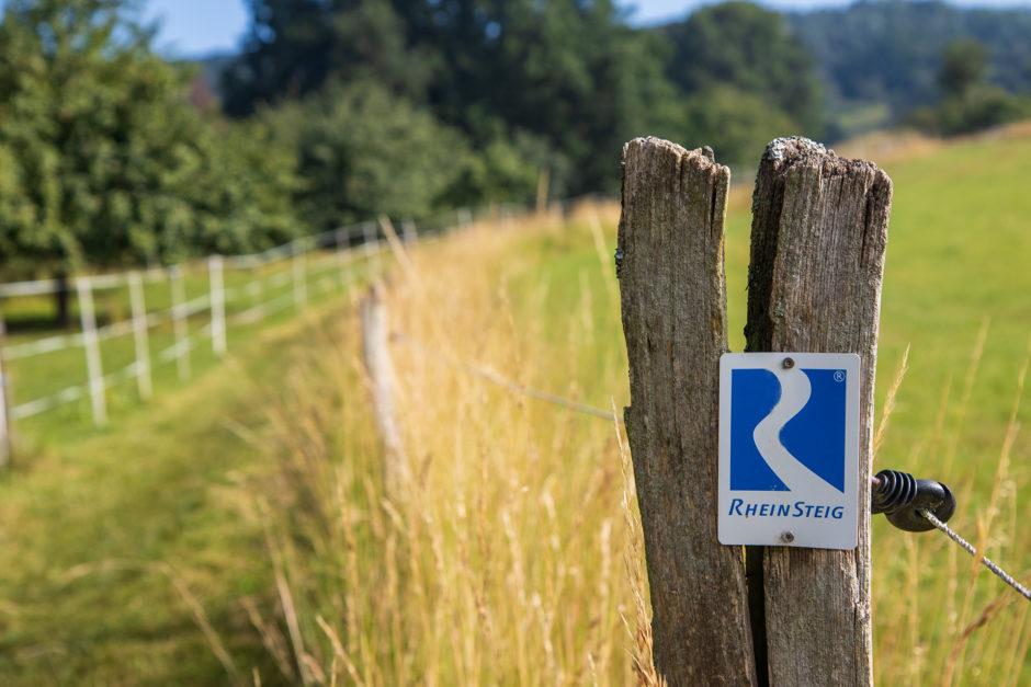 Traumwanderweg Rheinsteig: 320 Kilometer von Wiesbaden nach Bonn