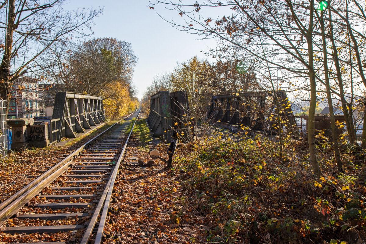 Oben auf der Eisenbahnbrücke über die Schiersteiner Straße.