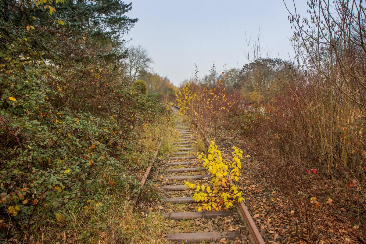 Etwa einen Kilometer hinter dem Dotzheimer Bahnhof.