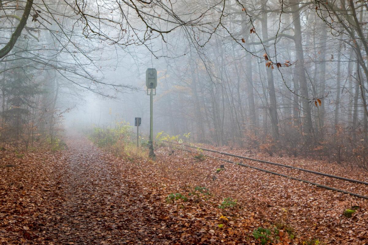 Zwischen Kohlheck und Chauseehaus folgen einige Wanderwege der Strecke.
