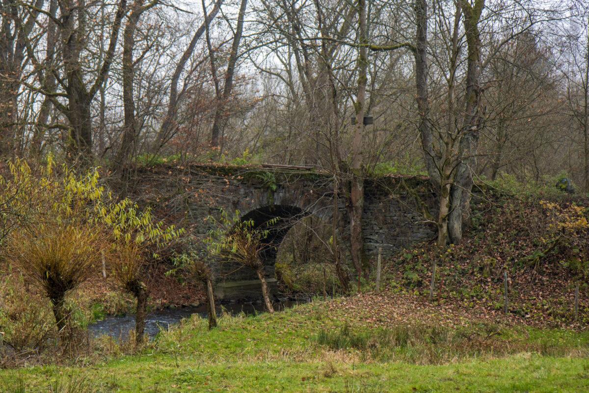 Die Brücke und der alte Damm zwischen Hessen und Nassau.