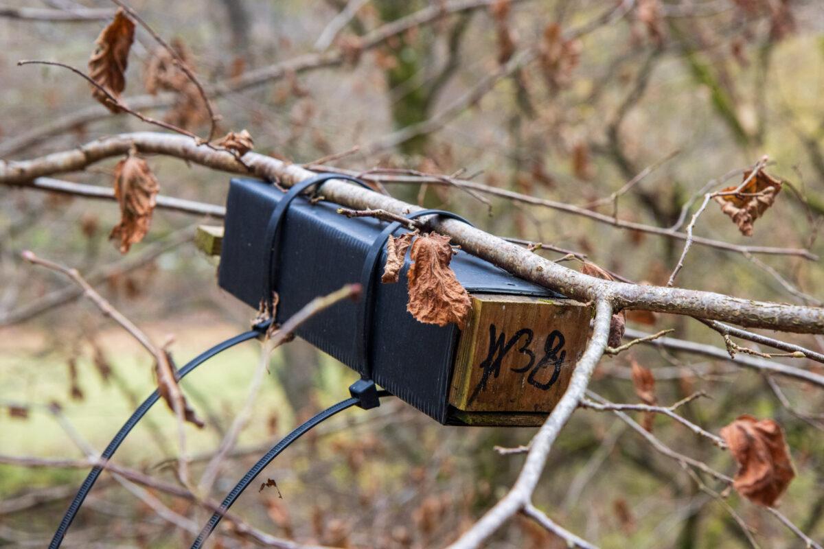 Von diesen kleinen Holzboxen hingen duzende entlang der Aartalbahn. Wenn jemand weiß, was es damit auf sich hat...
