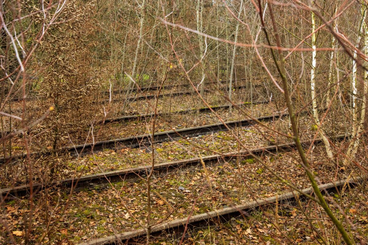 Viele Gleise waren einst einmal im Langenschwalbacher Bahnhof in Betrieb.