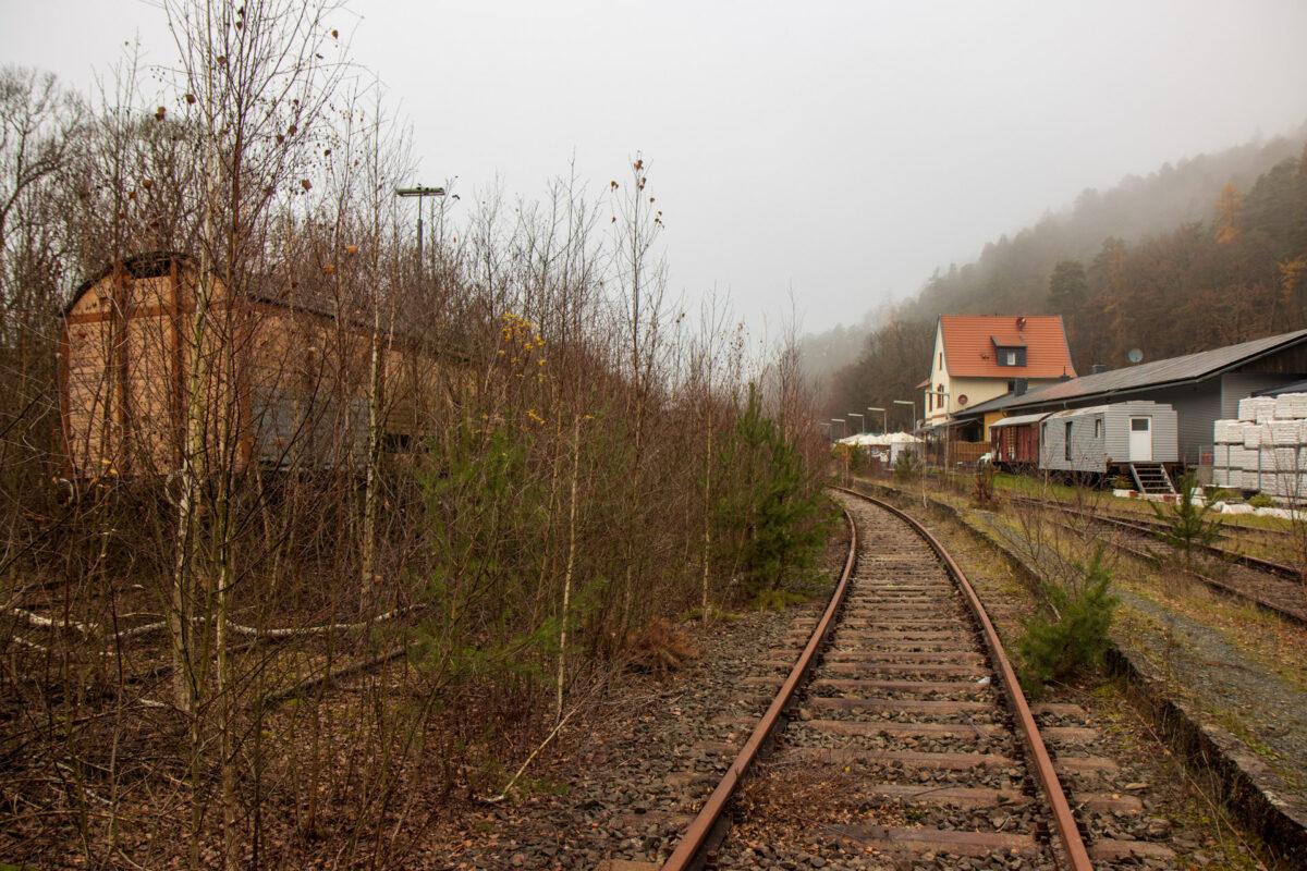 Nicht zugewachsen sind nur zwei Gleise von den ehemals acht parallel verlaufenden Gleisen.