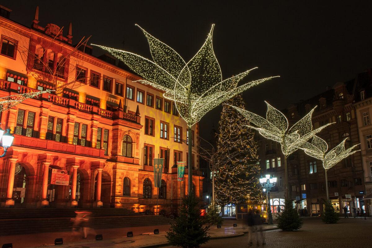 Der große Weihnachtsbaum vor dem Rathaus steht inzwischen auch.