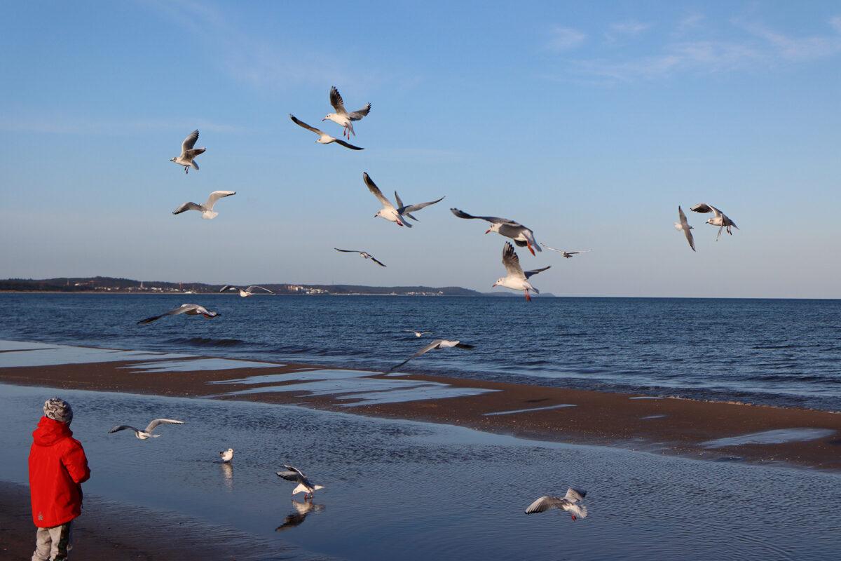 Ende Januar an der Ostsee. Die neue Kamera das erste Mal so richtig ausprobieren...