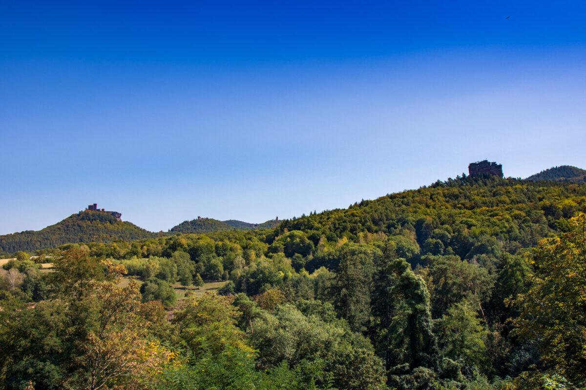 Einer der vielen Ausblicke über den Pfälzer Wald. Ganz links die Burg Trifels, rechts der Asselstein.