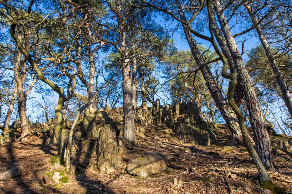 Im Wald auf dem Rückweg lustige Felsformationen, die im Abendlicht um die Wette strahlten.