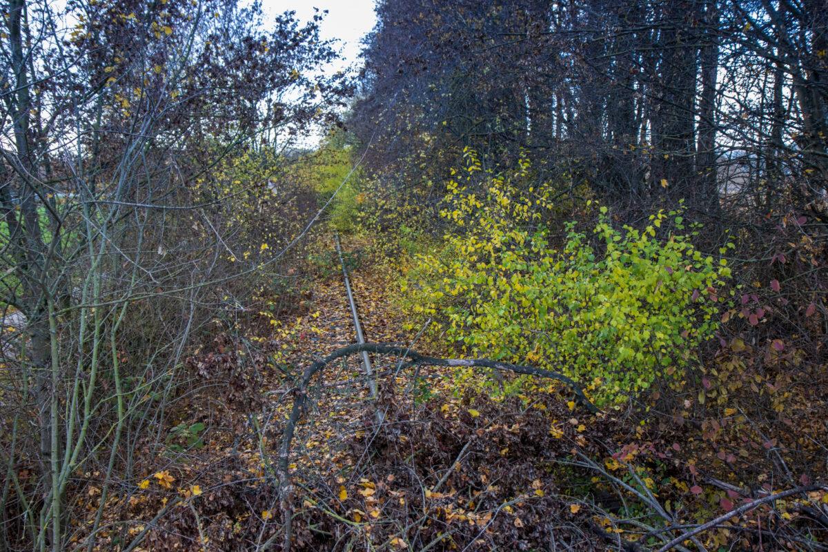 Südlich des Neubaugebiets Erbenheim-Süd sind noch einige Meter Gleis erhalten. Man muss nur genau hinschauen.