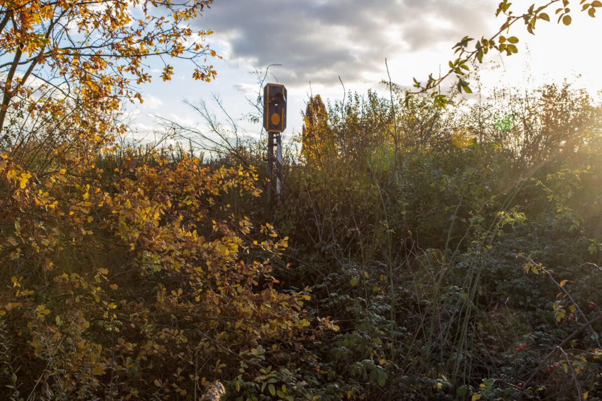 In der Nähe der Erbenheimer Gartenbaufirma Gramenz steht einsam und verlassen ein letztes Signal der Strecke.