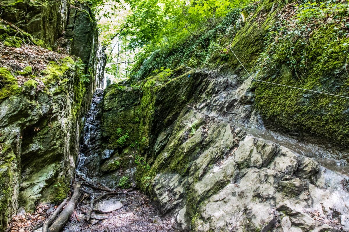Der steilste und damit anstrengendste Teil der Etappe führte durch die enge Ruppertsklamm.