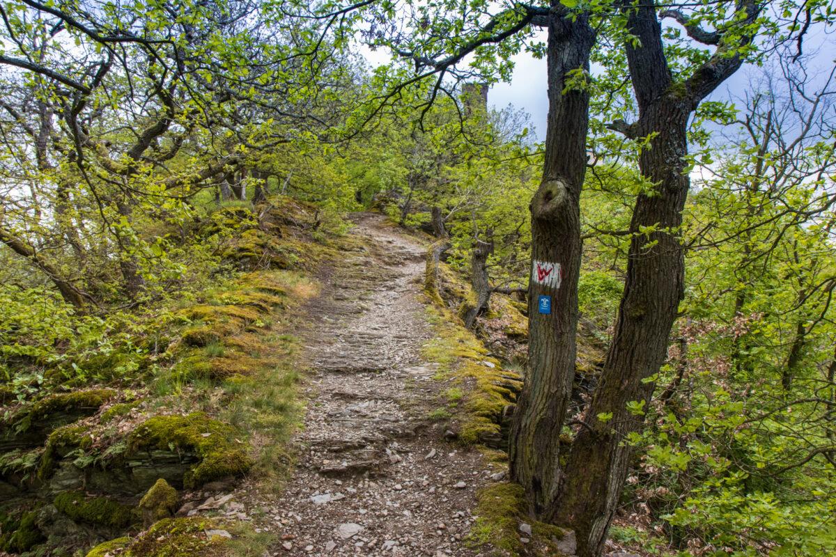 Der Felsenweg führte vom Kurviertel direkt hoch zum Concordiaturm auf 263 Metern Höhe.