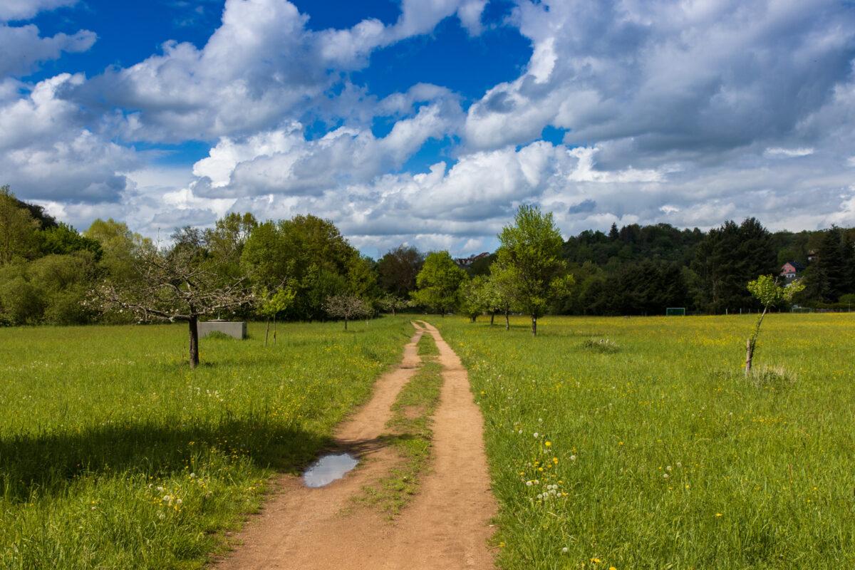 Blauer Himmel mit Sonnenschein und Regenschauer wechselten sich am Sonntag im Zwei-Stunden-Rhythmus ab.